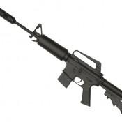 GUS-2481