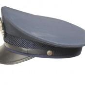 GUS-2766